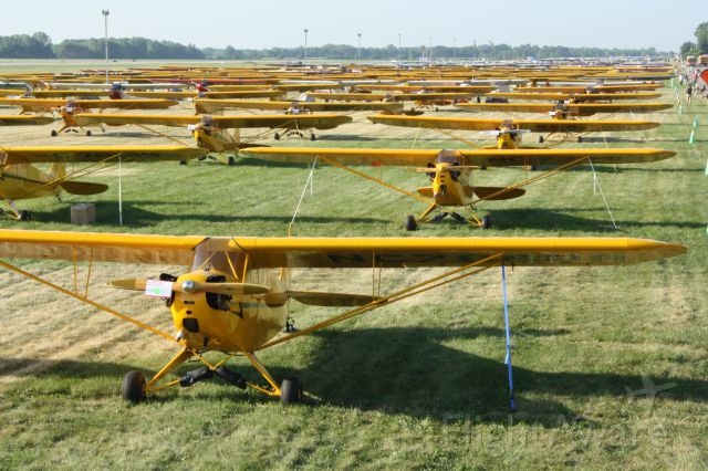 Piper NE Cub — - All 181 Piper Cubs at AirVenture 2012. Taken from Nikon photo deck.