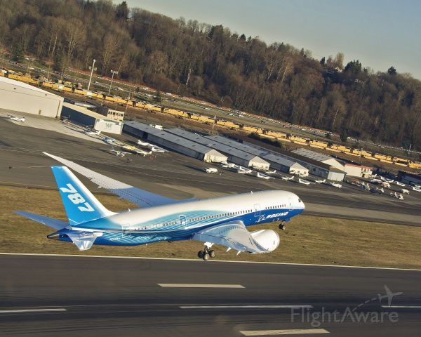 Boeing 787-8 (N787BA) - Boeing 787 Dreamliner - photo courtesy of The Boeing Company