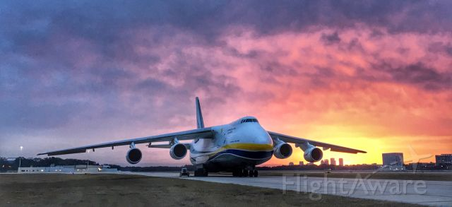 Antonov An-124 Ruslan (UR-82073) - Sunrise with downtown Tampa in the background of this giant!