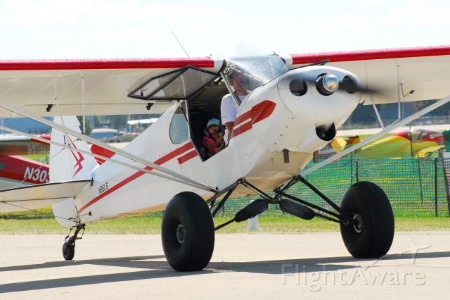 Piper L-21 Super Cub (N85LS) - SuperCub