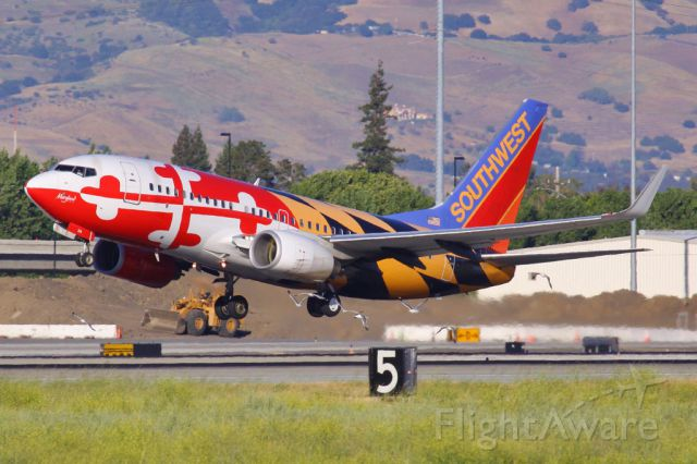 BOEING 737-400 (N214WN) - Scaring some gulls away in San Jose.