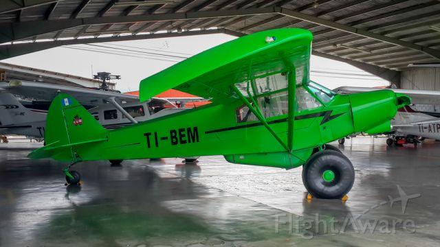 Piper L-21 Super Cub (TI-BEM) - LINDA PINTURA