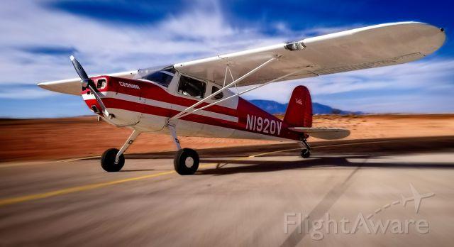 Cessna 140 (N1920V)