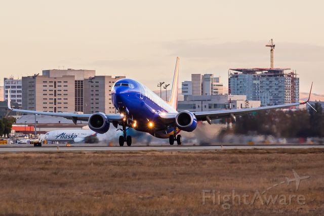 Boeing 737-800 (N8313F)