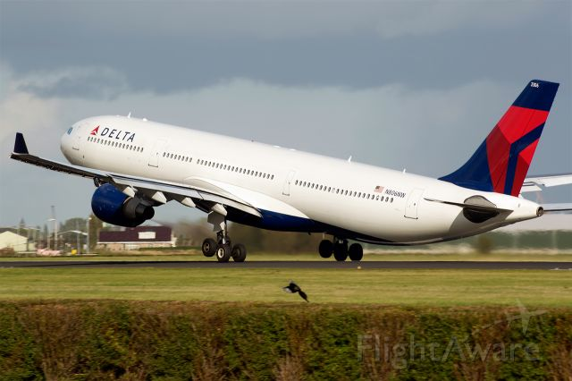 Airbus A330-300 (N806NW)