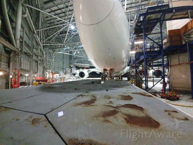 Boeing 747-400 (VH-OEJ) - taken this photo up close of Wanula in her hanger after her day out on a joy flight