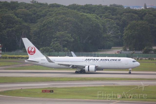 BOEING 767-300 (JA620J)