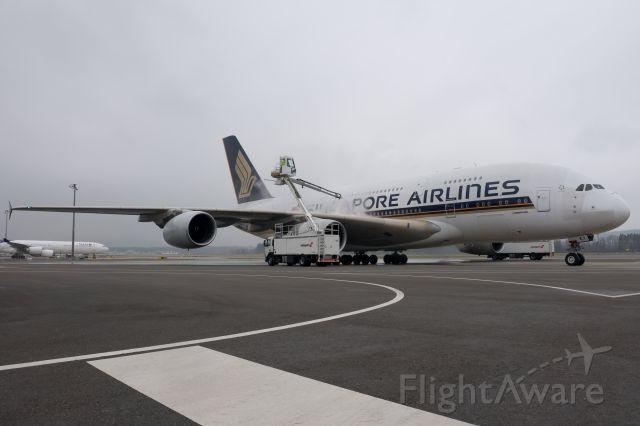 Airbus A380-800 (9V-SKJ) - De-Icing at ZRH