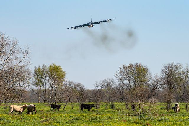 Boeing B-52 Stratofortress — - Barkdale AFB, Louisiana