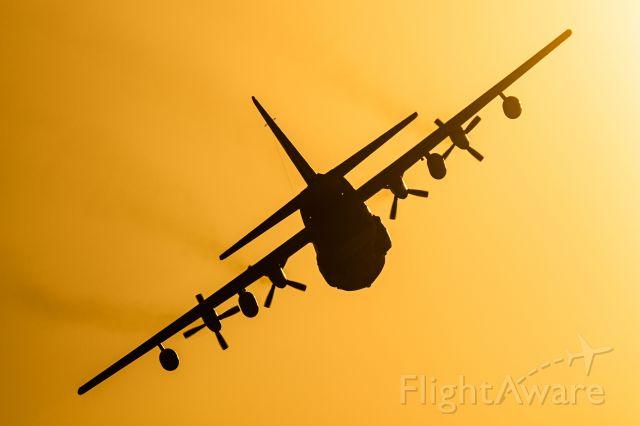 Lockheed C-130 Hercules (0420)