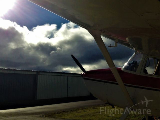 Cessna 170 (N170DP) - Hoping for clearing soon