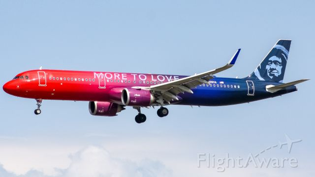 Airbus A321 (N826VA) - More to love at DCA