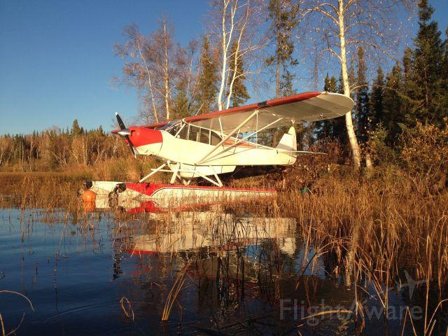 Piper L-21 Super Cub (N1907A) - At the lake