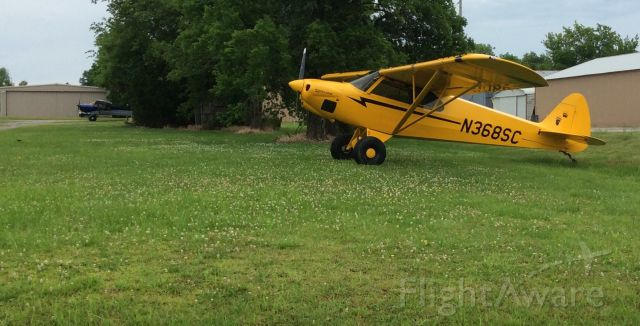 Piper L-21 Super Cub (N368SC) - Memorial Day 2016