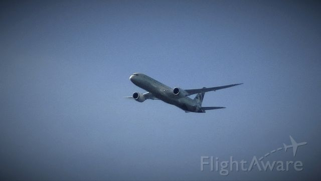 Boeing 787-8 (A6-BLC) - 6 miles ENE of Dulles Airport. EY141 enroute from AUH to IAD. 3,000 feet, 250 KIAS.