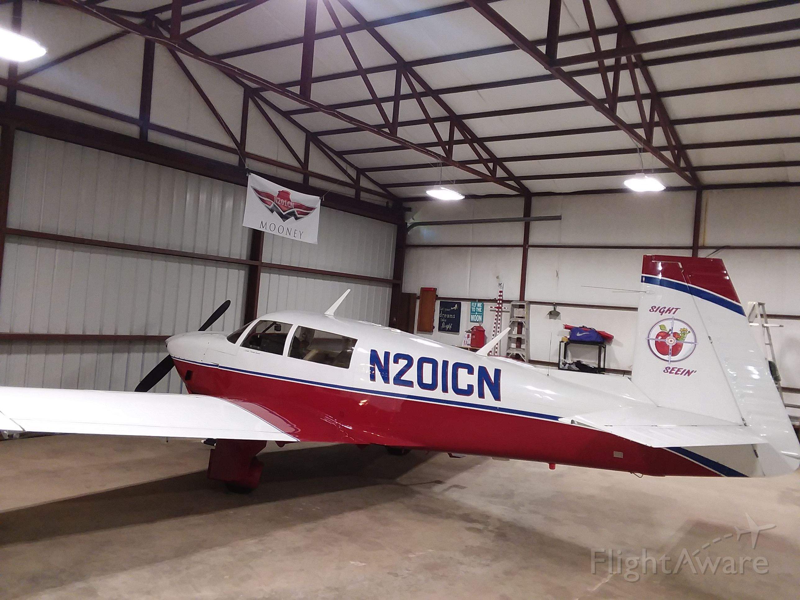Mooney M-20 (N201CN) - Safe n