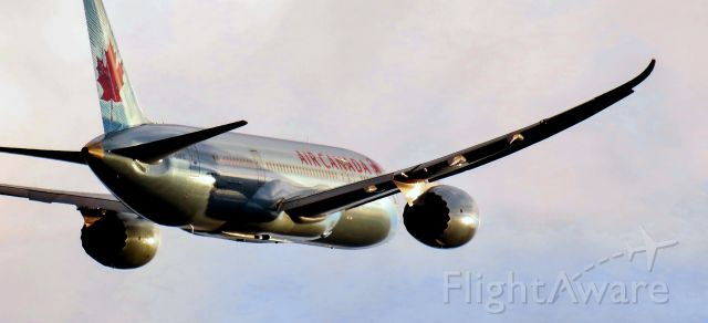 Boeing Dreamliner (Srs.8) (C-GHPQ) - Air Canada Boeing 787-8 serial #35257