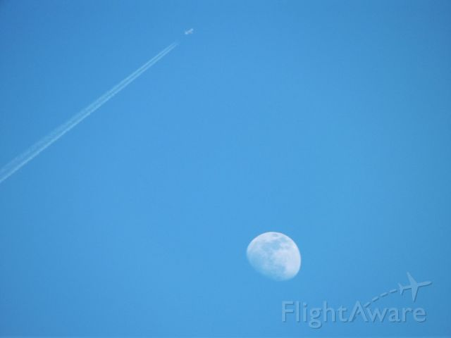 """— — - """"Fly me to the moon..."""""""