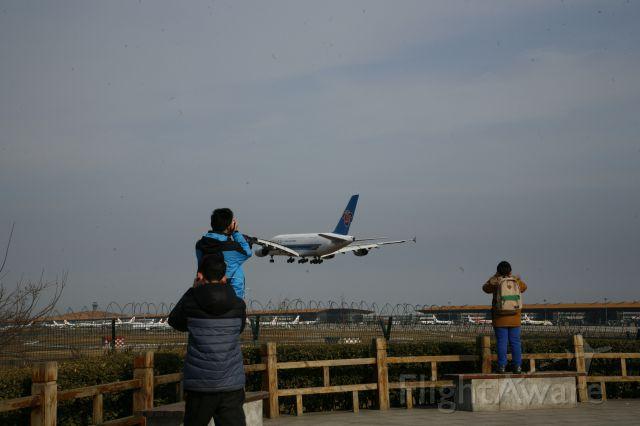 Airbus A380-800 (B-6136) - 学生们对飞行的热爱