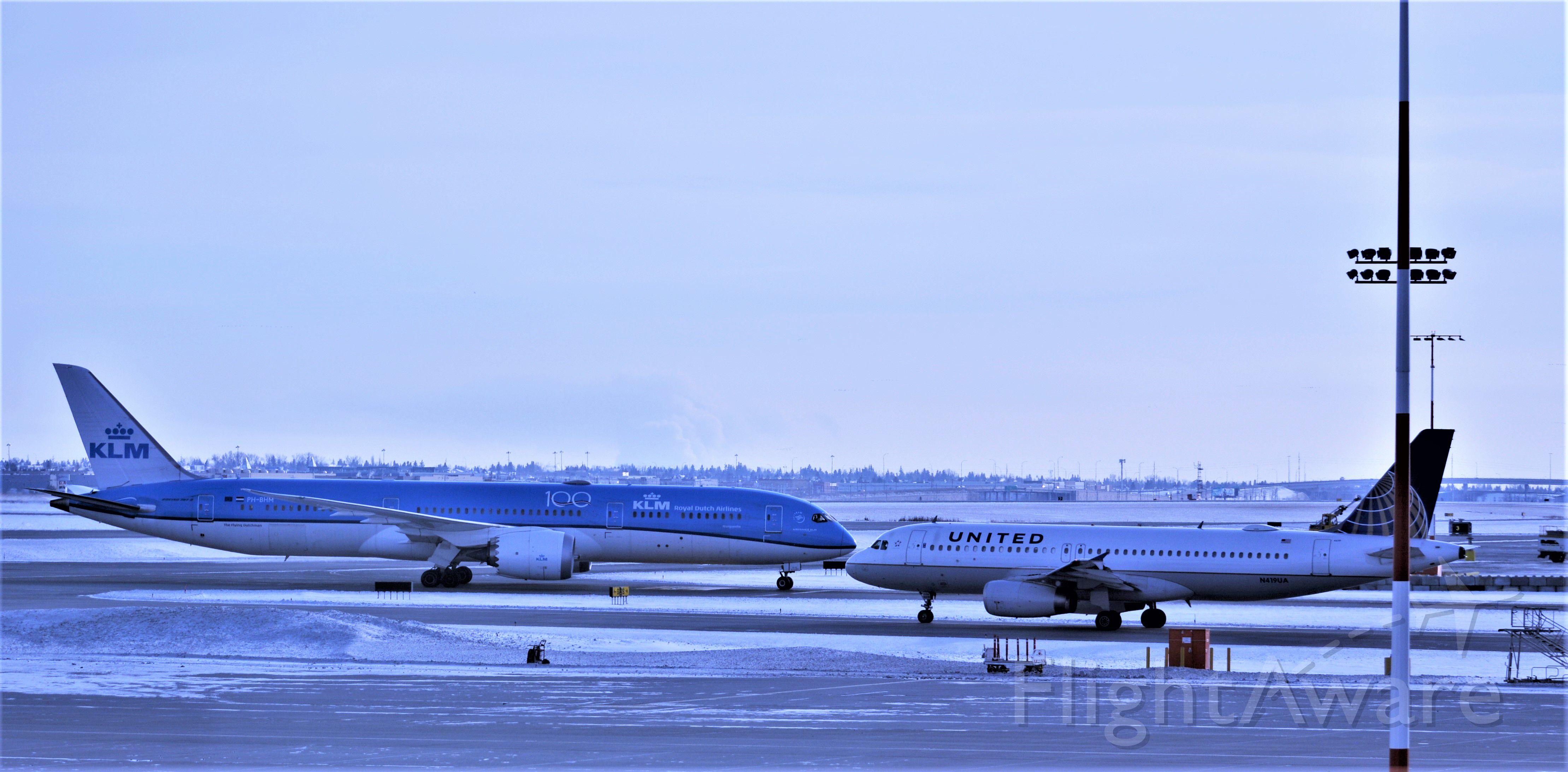 Boeing 787-8 — - head on