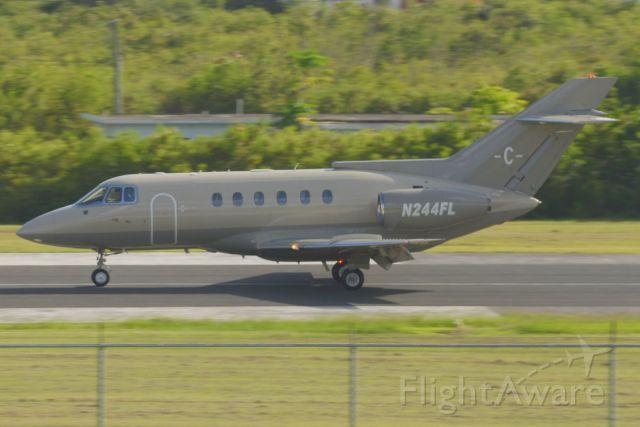Raytheon Hawker 800 (N244FL) - BAE 125 SERIES 800A landing at TQPF