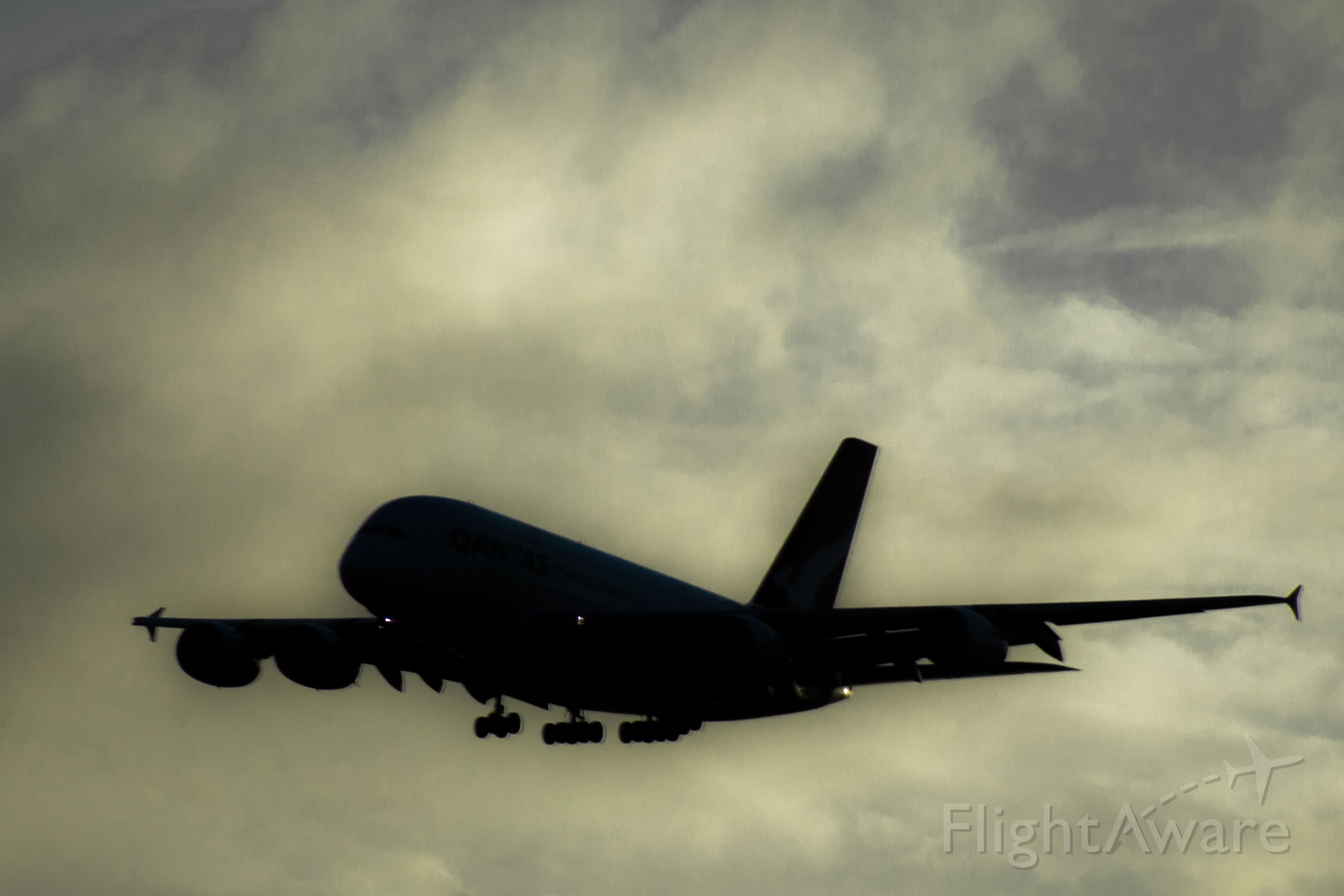 Airbus A380-800 — - Qantas flight arriving to LAX. Was able to take this image against a bright morning sky to make the silhouette.