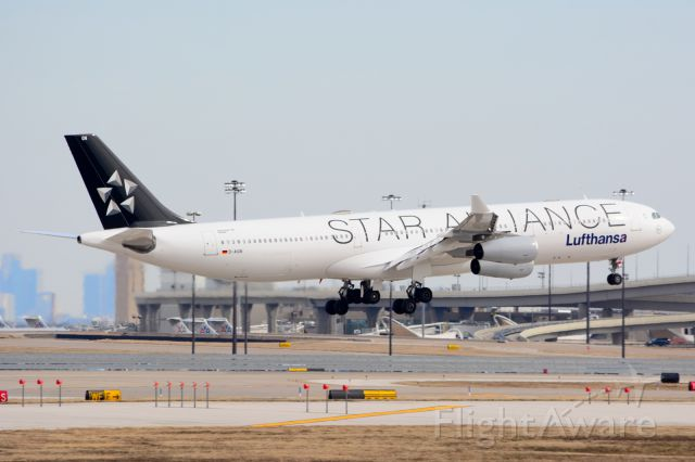 Airbus A340-300 (D-AIGN) - Lufthansa (Star Alliance) - D-AIGN - A340-300 - Arriving KDFW 01/31/2014 - This is an unusual livery.