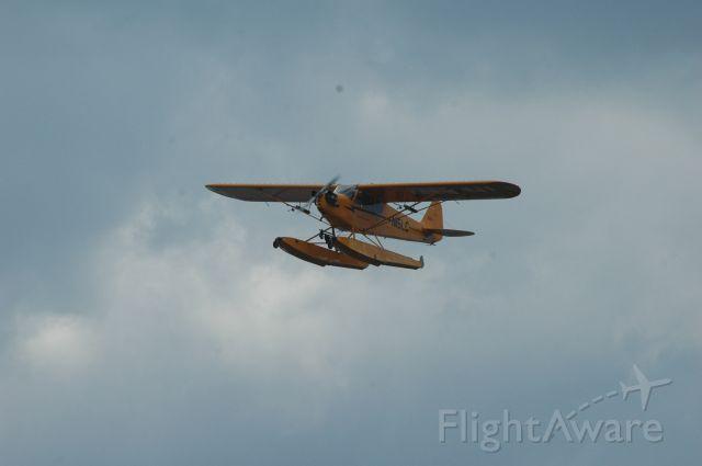 Piper L-21 Super Cub (N15LC)