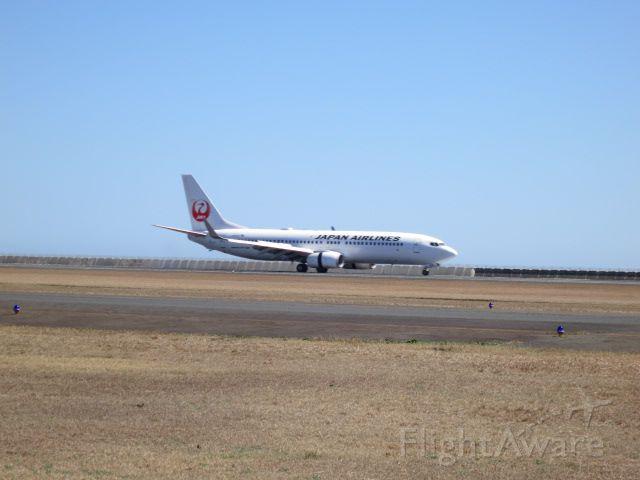 Boeing 737-800 (JA309J)