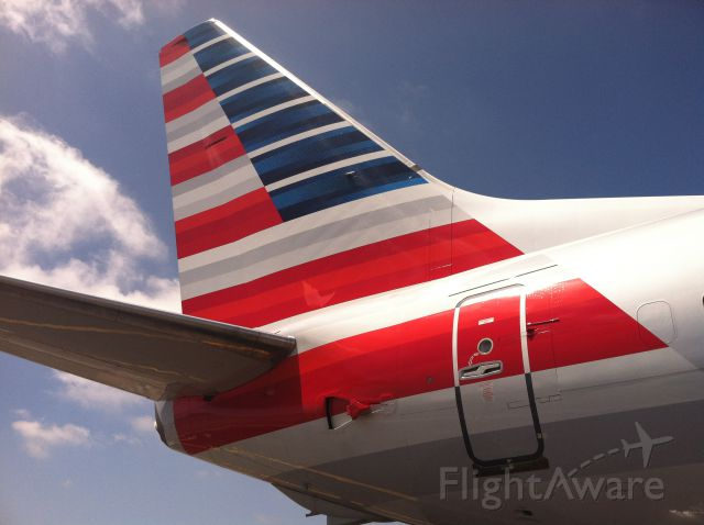 Boeing 737-800 (N980AN) - New American Airlines 737-800 tail