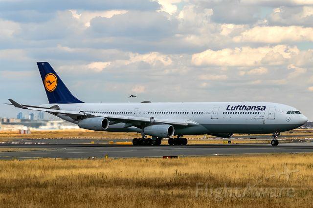 Airbus A340-300 (D-AIGZ) - nearly a birdstrike!!