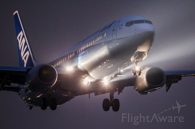 Boeing 737-800 (JA65AN) - In the heavy rain