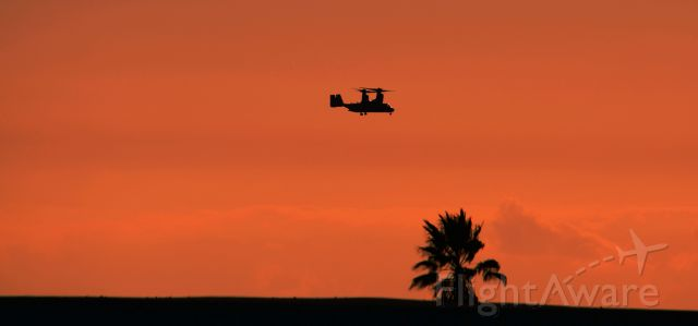 """Bell V-22 Osprey — - This U.S. Marine Corps V-22 Osprey is with VMM-268 out of Miramar California. br /With Marine Aircraft Group 16 (MAG-16). The squadron is known as the """"Red Dragons"""". br /SEMPER FI!"""