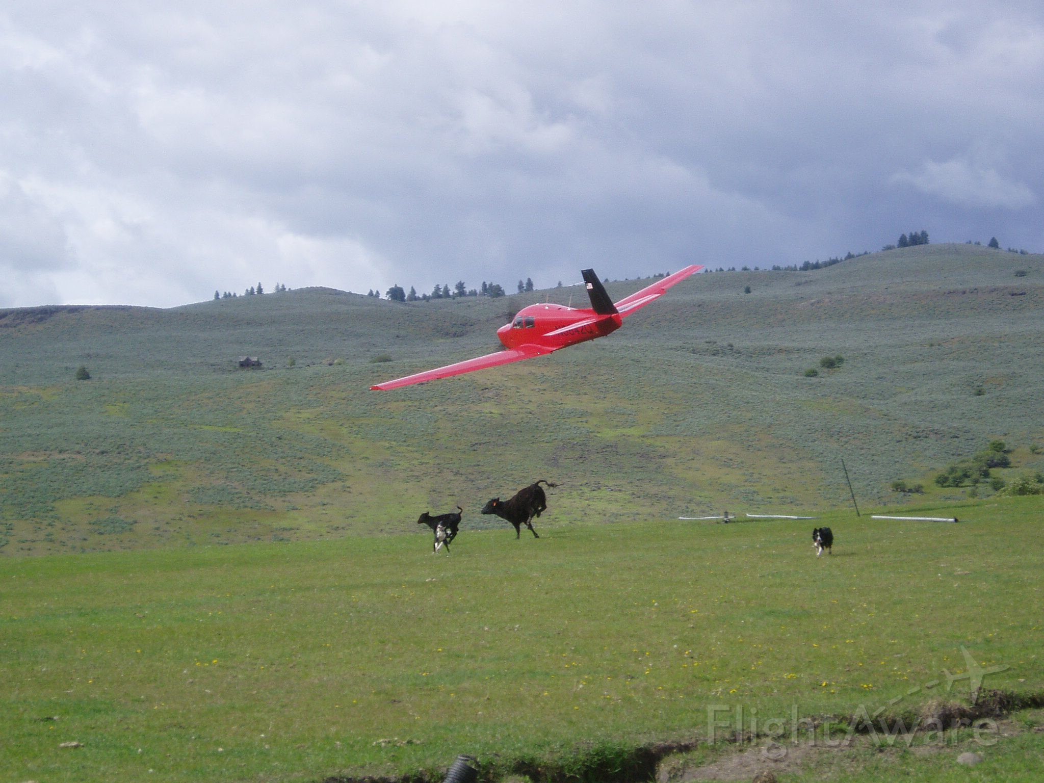Mooney M-20 (N5842Q) - Taking off from a private 1900ft grass strip in Oregon