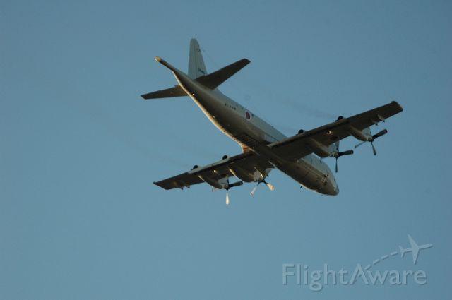 N5045 — - 03.Nov.2009  Iruma Air Show