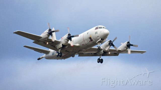 Lockheed P-3 Orion (15-8215) - A USN P3C Orion in the pattern for touch/go landings on Rwy 16R on 3.6.17. (Cn 5560). The aircraft is attached to VQ-1