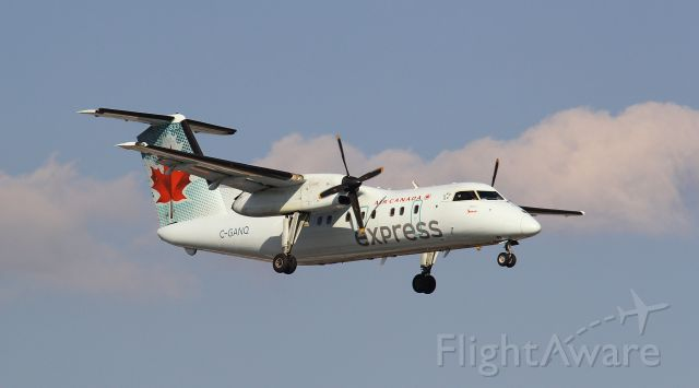 de Havilland Dash 8-100 (C-GANQ)