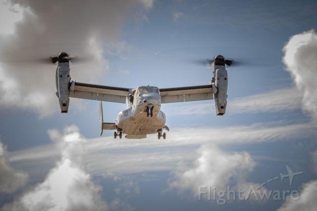 Bell V-22 Osprey (N8216)