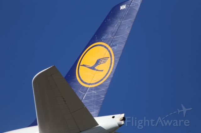 Airbus A380-800 (D-AIMM)
