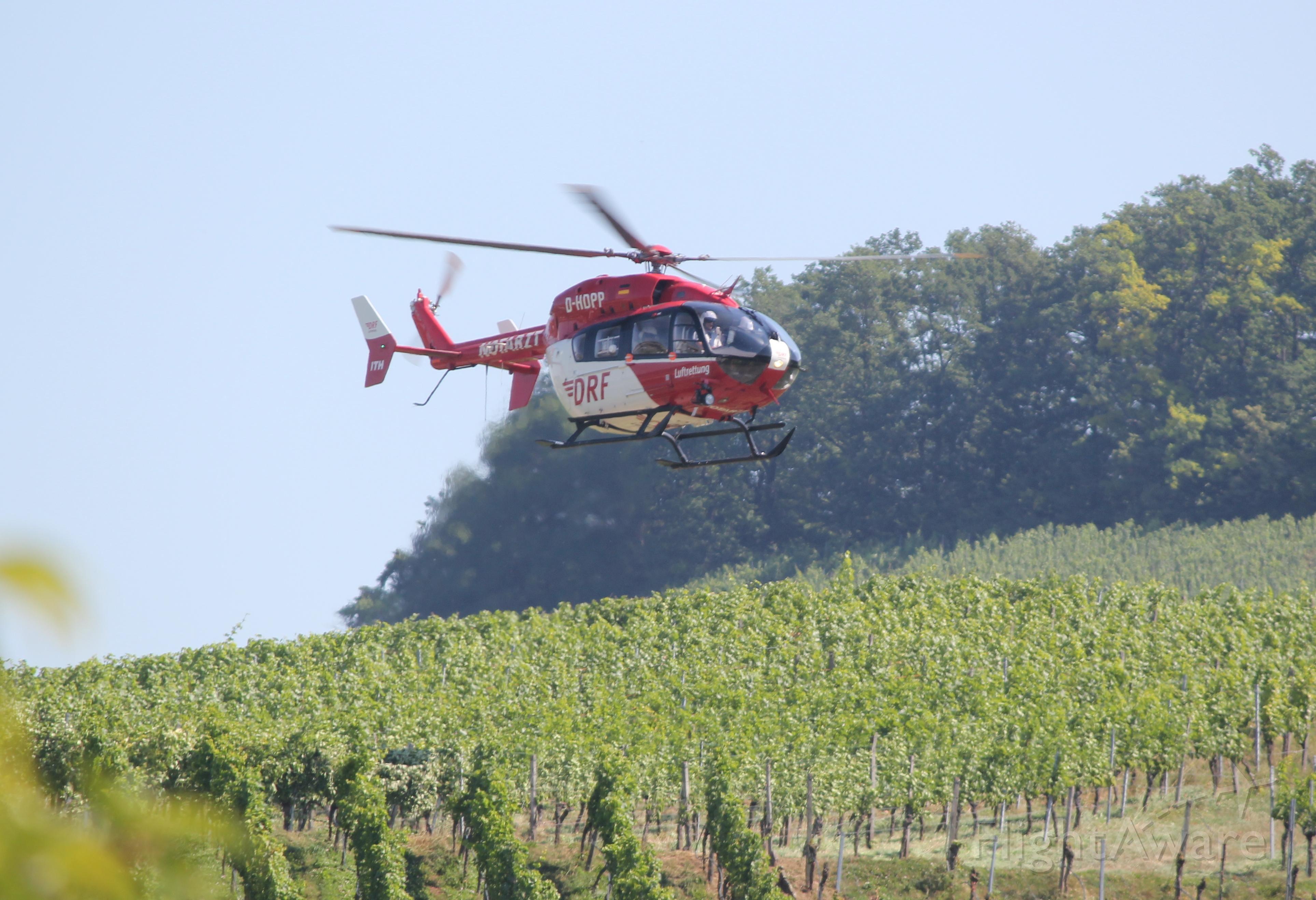 D-HDPP — - Rettungshubschraubereinsatz (Christopher 51, CHX51) am 30.06.2018 in den Weinbergen zwischen Kleinbottwar und Großbottwar.