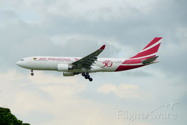 Airbus A330-200 (3B-NBL) - Arrival into WSSS