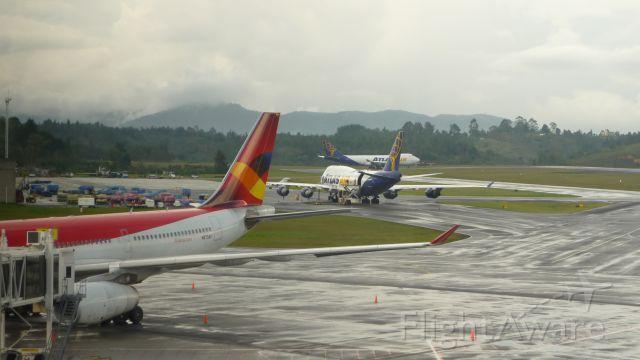 Airbus A330-200 (N973AV)