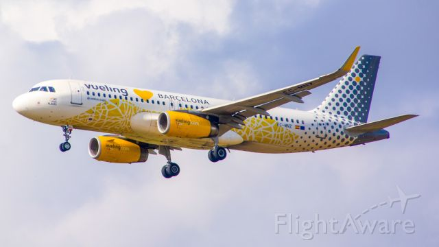 Airbus A320 (EC-MNZ) - vueling a320 landing on runway 21 on a very nice day!