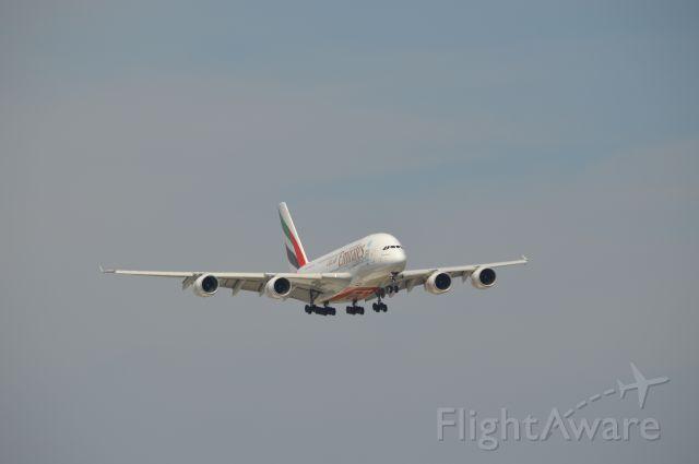 Airbus A330-300 (A6-EDC)