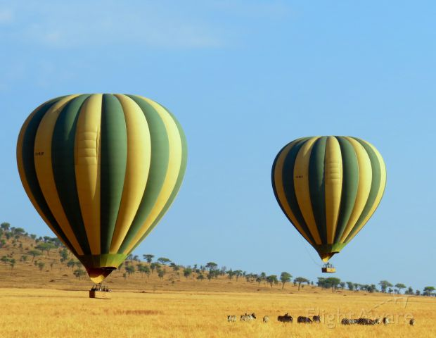 Unknown/Generic Balloon (5H-MXF) - Ballooning in the Serengeti