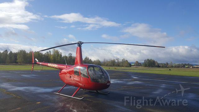 Cessna Skyhawk (N666RL)