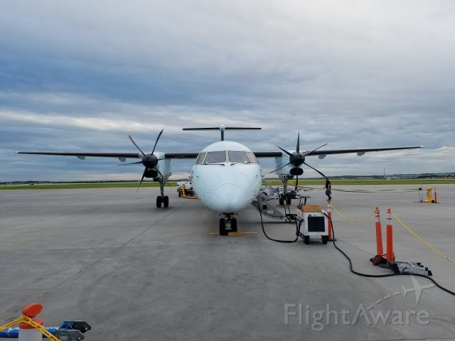 de Havilland Dash 8-100 — - Boarding to Calgary.