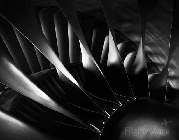 Boeing 777 — - 777 engine fan. Engine was in service facility with the sunlight coming in from behind engine.