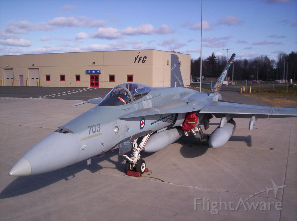 McDonnell Douglas FA-18 Hornet (18-8703)