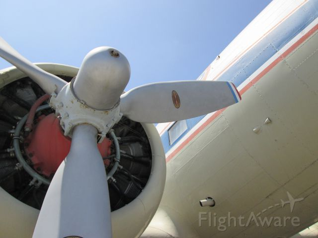 Douglas DC-3 — - DC3 on display at the Flight Path Learning Center & Museum at LAX (Imperial Highway)